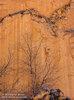 Tree and Rock Wall