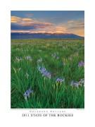 Medano Ranch,Blanca Peak, wild iris