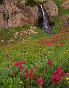 waterfalls,wildflowers
