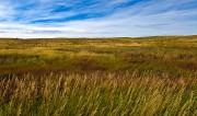 Douglas County Prairie