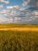 Nebraska Prairies and Grasslands