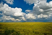 Colorado Prairies and Grasslands
