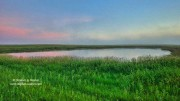 prairie, North Dakota,prairie pothole country,dawn,grass,National Wildlife Refuge,NWR