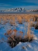 mountains,Nevada,Ruby Mountains,Winter,