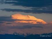Denali,AK, Alaska, Denali NP,NP,alpenglow