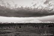 Denali, Mt McKinley, Denali NP,cloud, B&W, Alaska