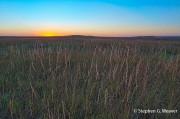 Tall Grass Prairie Sunset
