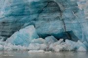 Alaska,Glacier Bay NP,Lampugh Glacier