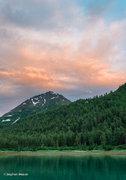 Alaska,Glacier Bay NP,Shag Cove