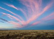 Autumn, Colorado, E  Paso  County, prairie, sunset