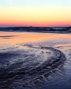 beach, Olympic National Park,Ruby beach
