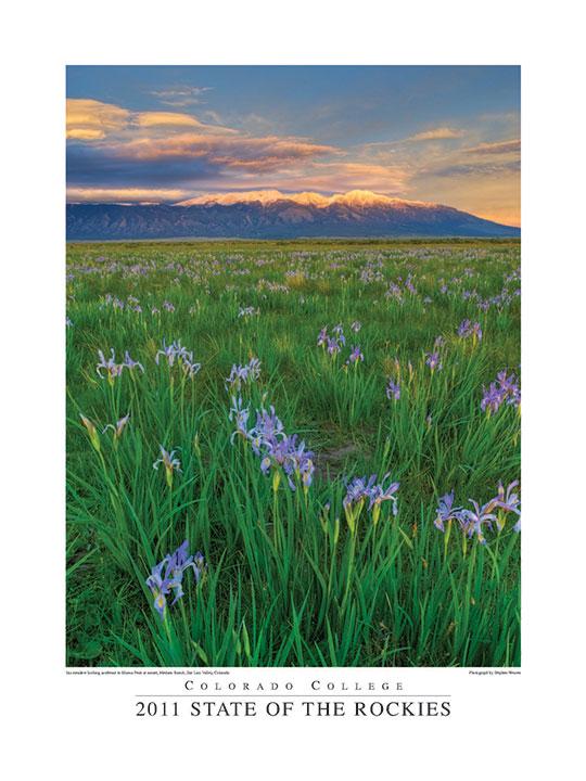 Medano Ranch,Blanca Peak, wild iris, photo