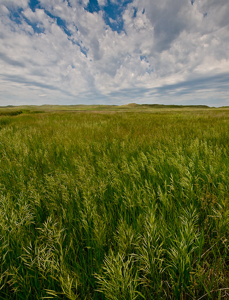 Sandhills,prairie,grass,grasslands,Valentine National Wildlife refuge, photo