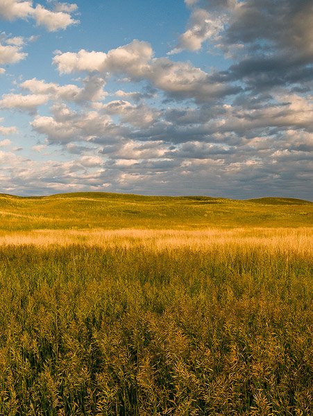 Sandhills,Nebraska,prairie,grass,grasslands, photo