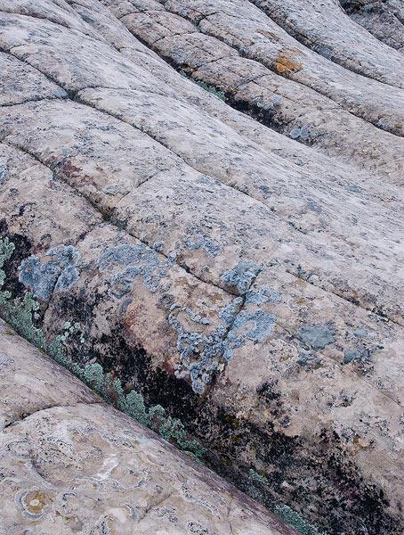Arizona,  Vermillion Cliffs Wilderness,  White Pocket,  geology,  sandstone,  sedimentary rocks                , photo