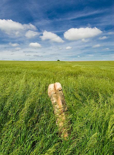 Kansas, Prairie, Spring, post rocks                , photo