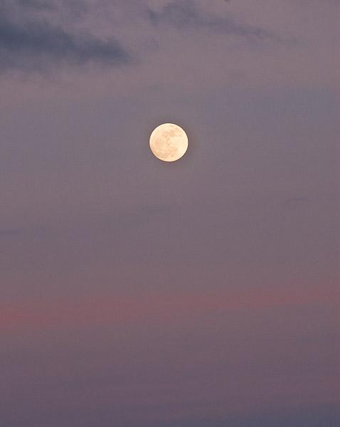 Oklahoma, Prairie, Spring, Wichita Mountains, moon                , photo