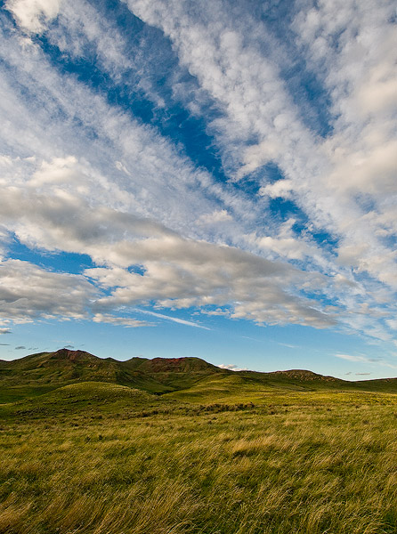 Ucross ranch,ucross,powder river basin,grass, photo