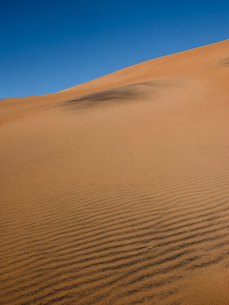 Colorado, Great Sand Dunes National Park, ripple marks, sand