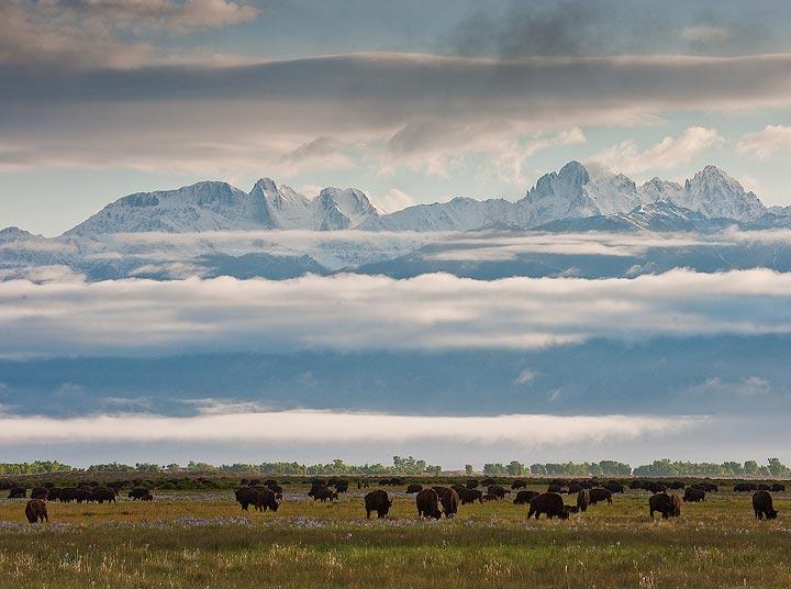 Bison and Crestone Peaks