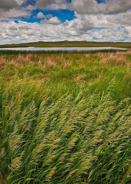 Nebraska, Sandhills,National Wildlife Refuge,Crescent Lake,grass,prairie, photo