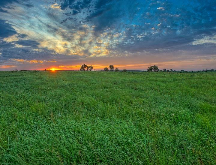 grass,prairie,Oklahoma,sunrise, photo