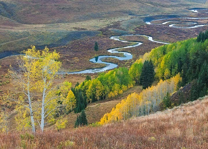 Autumn,fall color,aspens,Colorado, photo