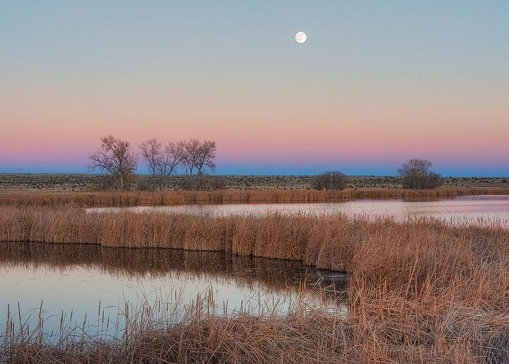 Colorado,moon,earth shadow,water,sunset               , photo