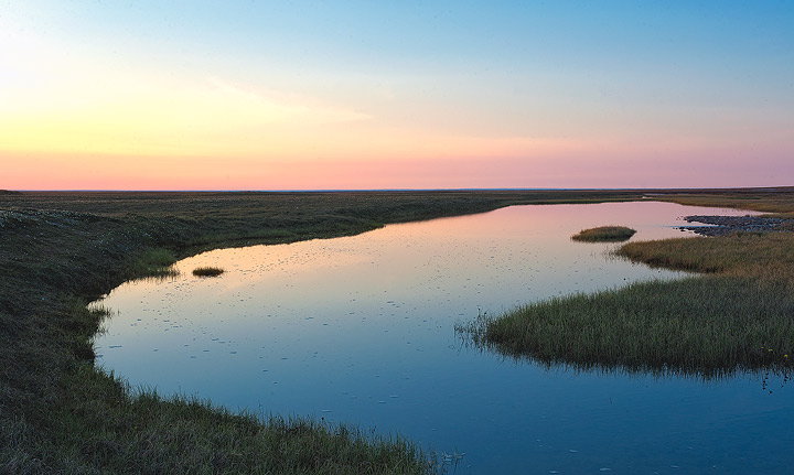 Early morning light reflects in a pond on the Arctic coastal plain in ANWR