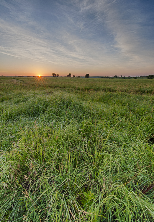 Nature Conservancy,Oklahoma,Osage County,Tall Grass Prairie Preserve,prairie, photo