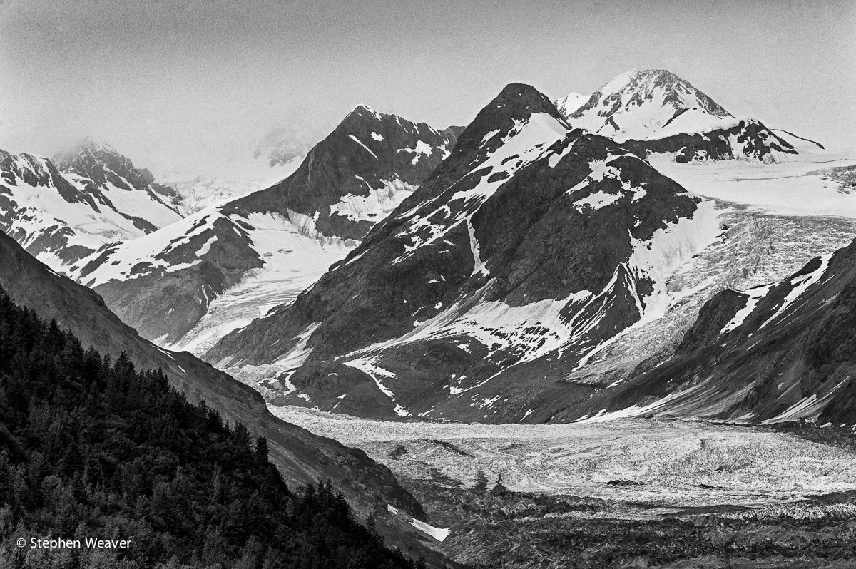 Alaska,Carroll Glacier,Glacier Bay NP,Queen Inlet, photo