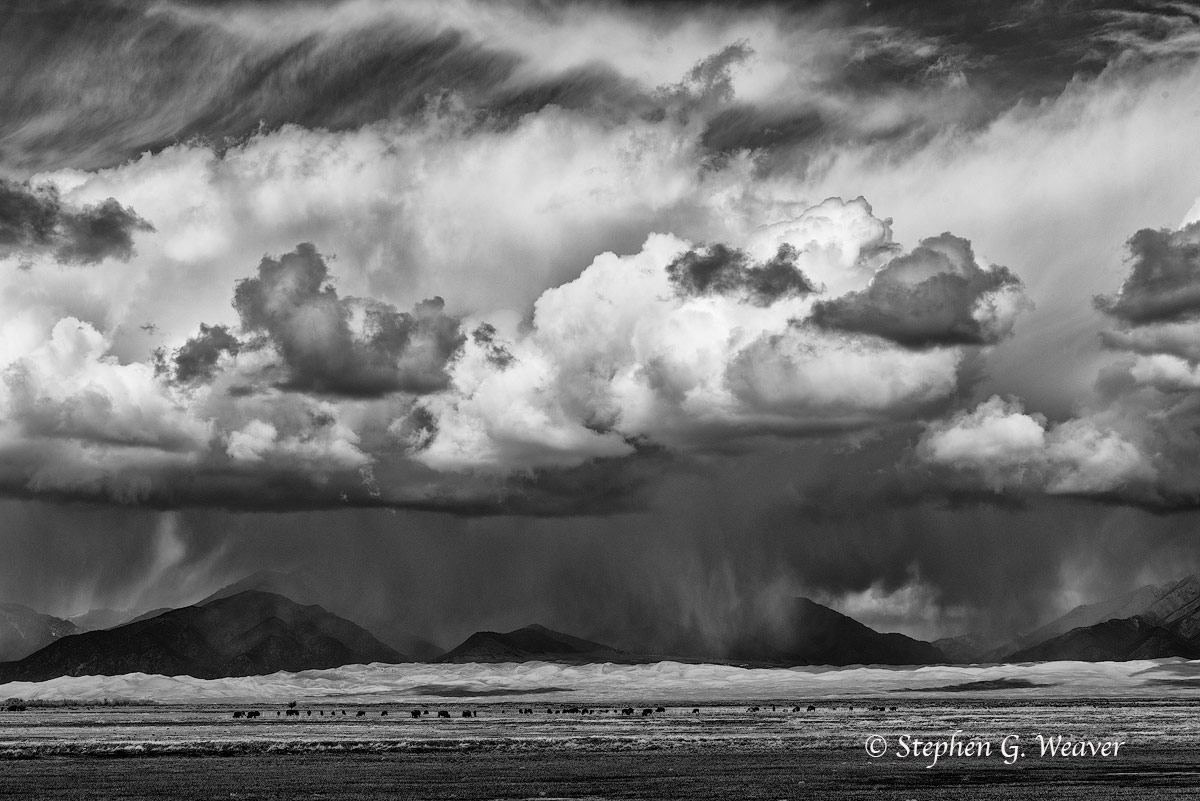 Zapata Ranch, Medano Ranch, storm, clouds, bison, sand Dunes, Nature Conservancy, Colorado, photo