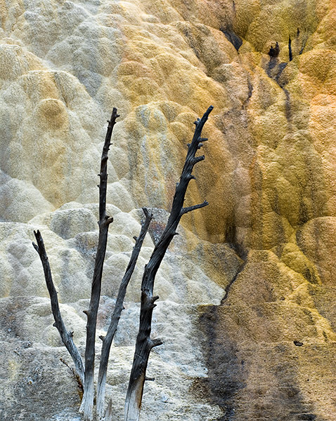 Yellowstone,travertine,hot springs              	, photo
