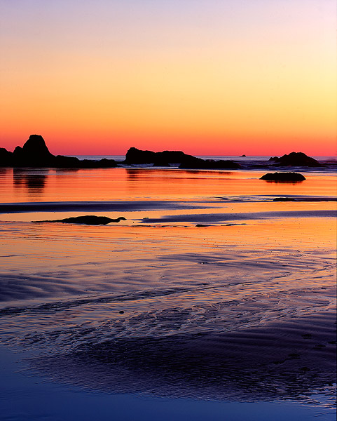 sunset,Ruby Beach,Olympic National Park,beach,sea stacks               	, photo