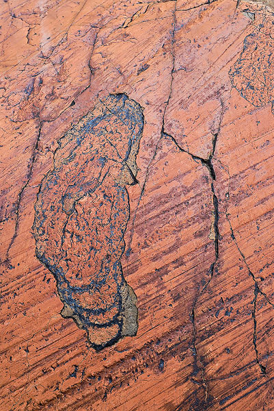 Wasatch Mountains, glacial Striae, quartzite