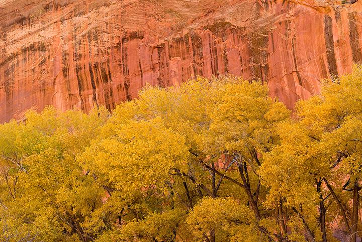 Capitol Reef NP, Utah                , photo