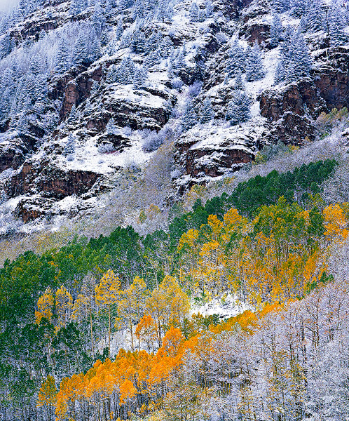 Fall colors,mountains,aspen,deciduous              	, photo